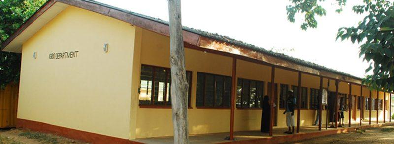 department of igbo language